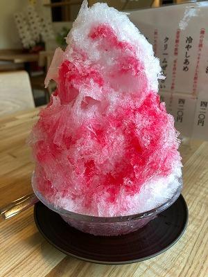 武蔵一宮 氷川神社と氷川だんご(^^)_e0152329_17222809.jpg