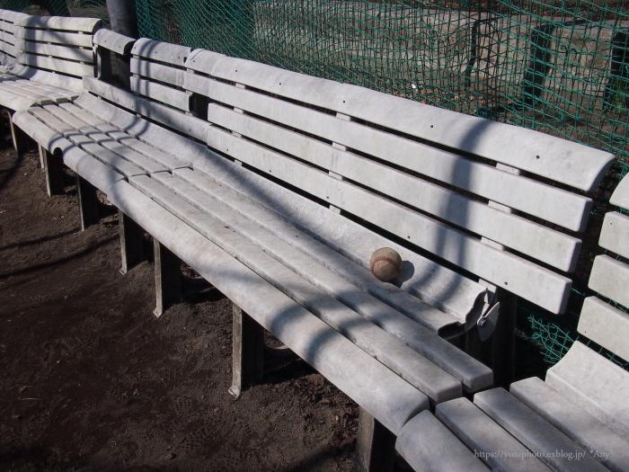 野球少年と挨拶_e0347431_17414839.jpg