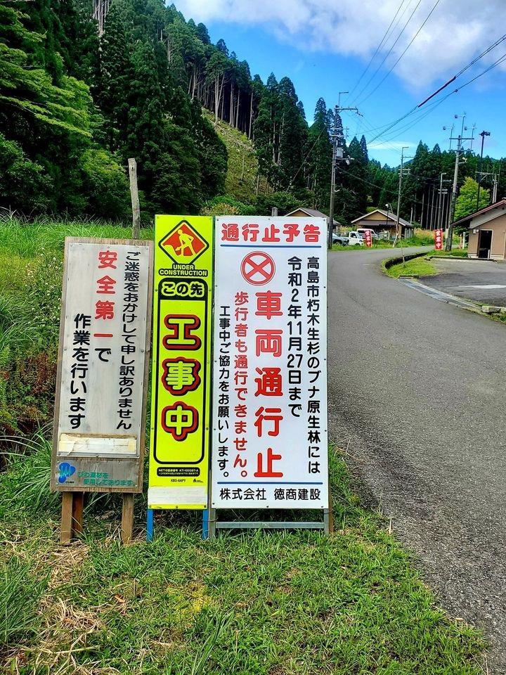 マルちゃん・・・久多猿軍団と早歩き散歩_d0005250_16463075.jpg