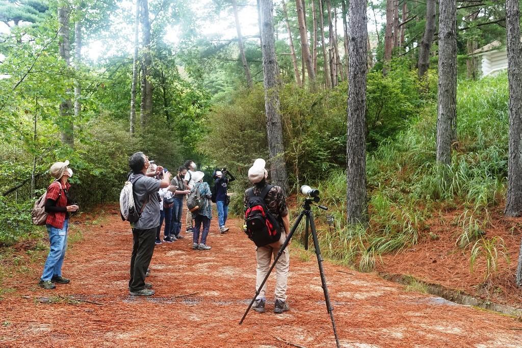 野鳥トレ221 森林植物園野鳥探鳥会_b0227552_19390897.jpg