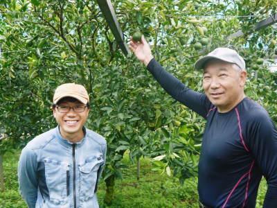 究極の柑橘「せとか」 摘果作業と玉吊り作業 樹勢も良く来年活躍する新芽も元気に芽吹いてます!_a0254656_18163731.jpg
