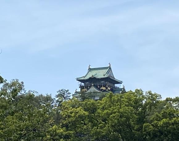 暑い公園で鳥さん撮影  大阪城公園_c0164881_15411519.jpg
