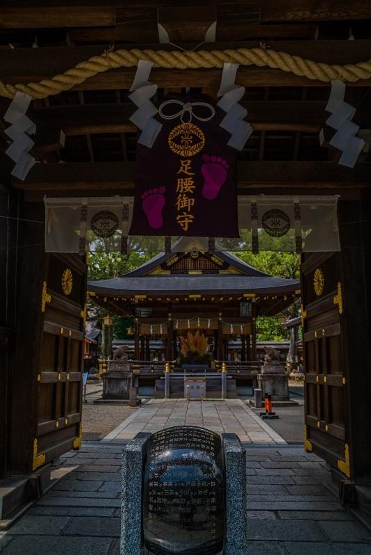 護王神社のイノシシ_e0363038_10354077.jpg