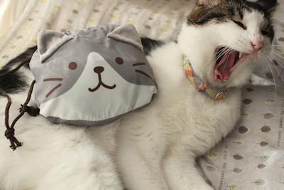猫エコバッグ_d0034352_20270225.jpg