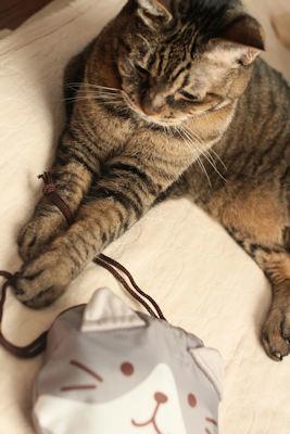 猫エコバッグ_d0034352_20270357.jpg