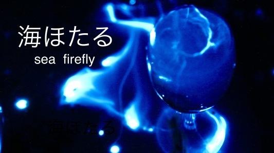 海ほたる 青の神秘_c0203062_19071582.jpeg
