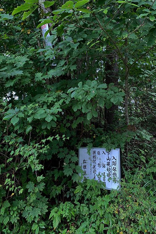 奥多摩から(飽きずに)松姫峠いろいろ 2020年9月13日_d0123571_17381974.jpg