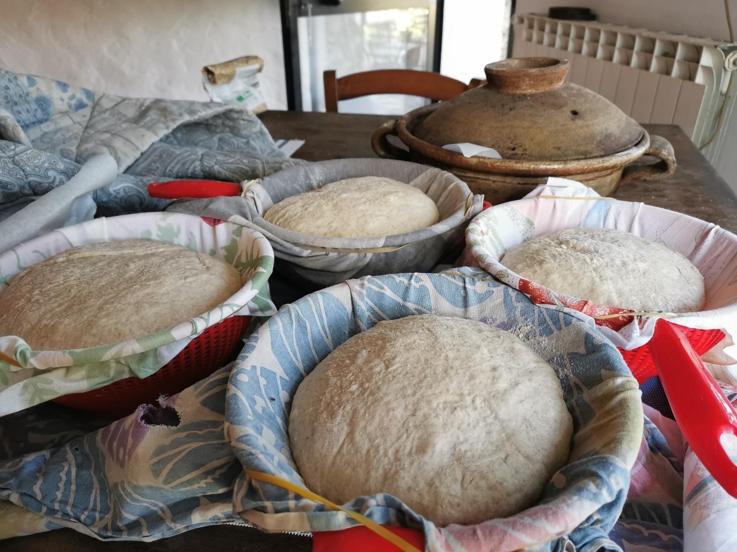 久しぶりに我が家でパン焼き_f0106597_02003679.jpg