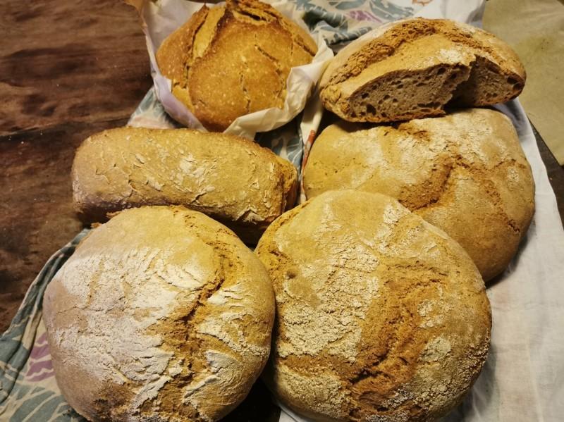 久しぶりに我が家でパン焼き_f0106597_04483013.jpg