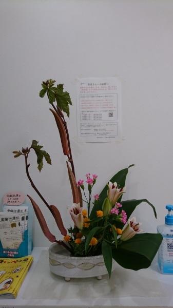 今週のお花_f0241925_20483000.jpg
