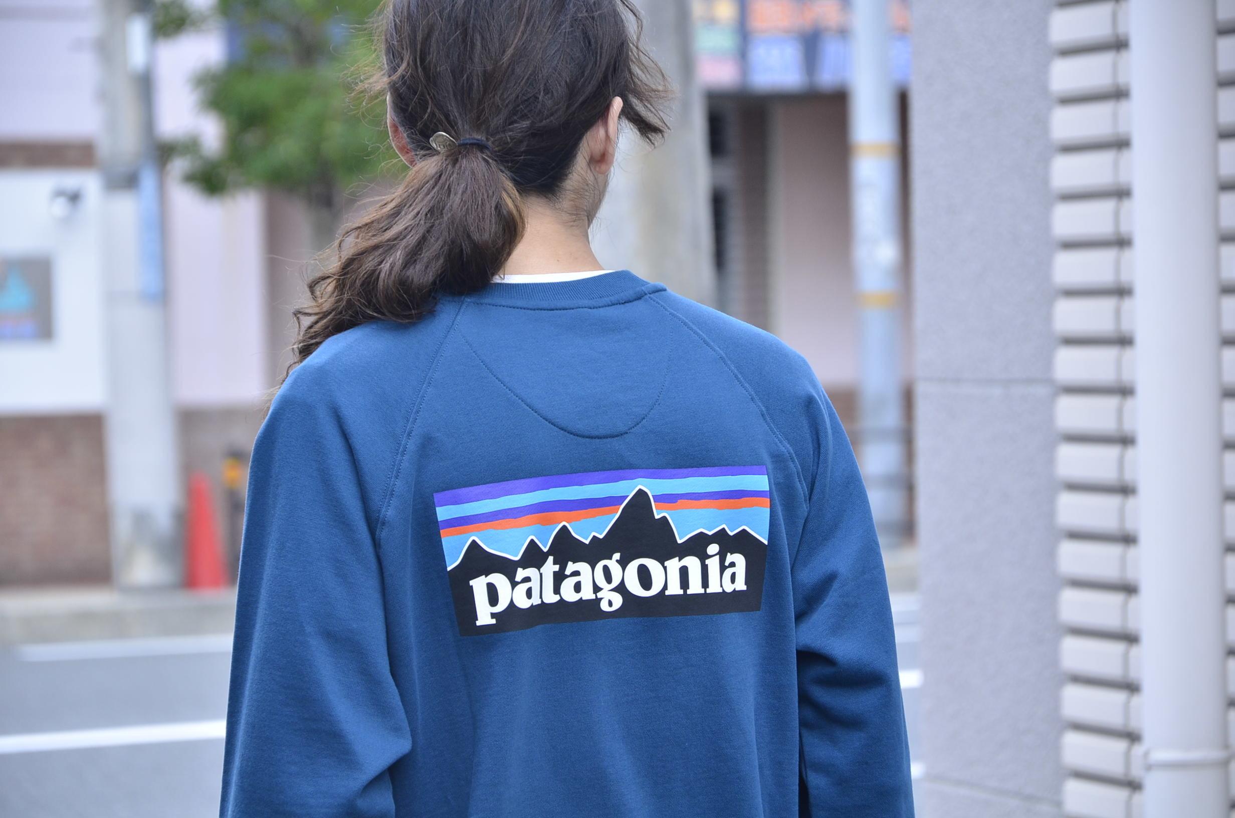 PATAGONIA P-6 Logo Organic Crew Sweatshirt_c0167336_15122658.jpg