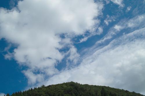 秋日和・・・キノコと秋空_d0005250_1948351.jpg