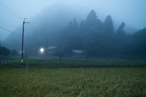 秋日和・・・キノコと秋空_d0005250_19535565.jpg