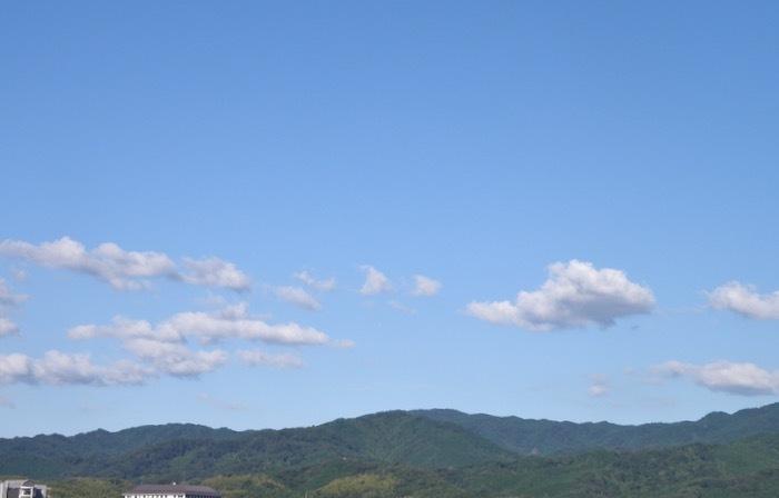 涼しい朝,今朝の最低気温は45日振りの平年以下の17.3度_d0006690_16060679.jpeg
