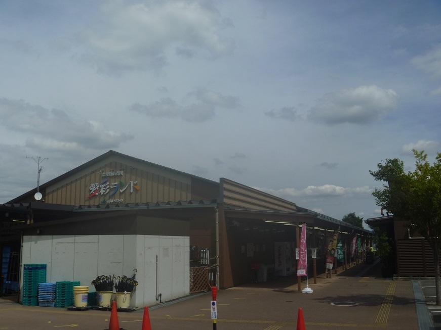 【ごちそうツーリング】岸和田港で生しらす丼、食べました_c0115197_12032762.jpg