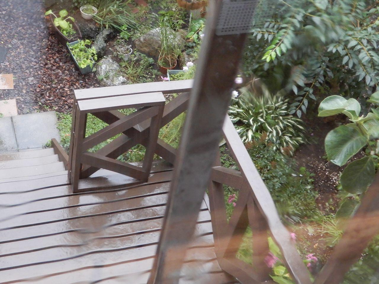 雨の朝から夏日へ_c0025115_22105638.jpg