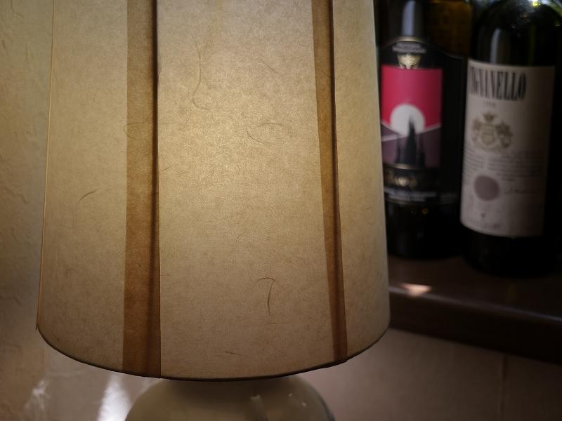 栃木の旅2 ランチ ピアンピアーノ/LUMIX S5+LUMIX20-60mm_f0050534_21432585.jpg