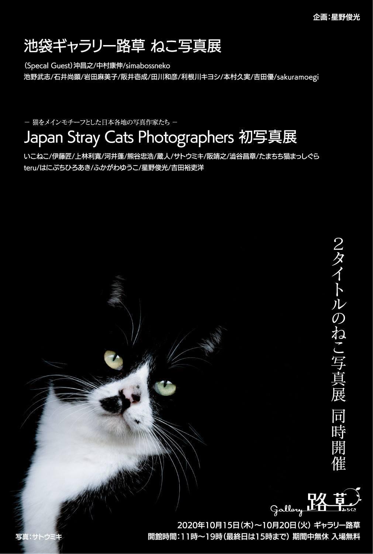 池袋「ギャラリー路草」にて2タイトルの猫写真展を開催します。_c0194541_15572759.jpg