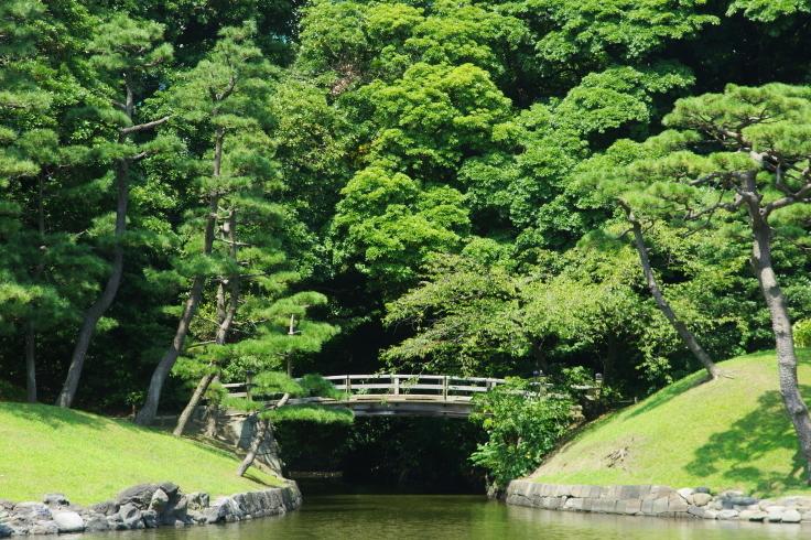中島のお茶屋にて_d0185744_18120172.jpg