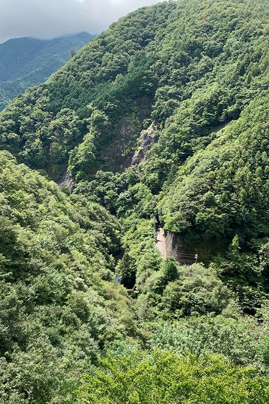 (飽きずに)松姫峠から葛野川ダムへ 2020年9月13日_d0123571_20481479.jpg