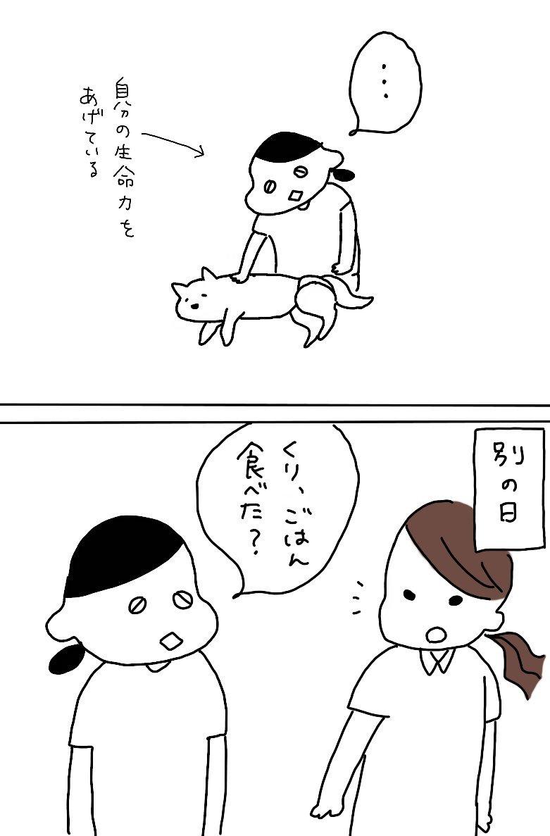 老犬のご飯の話_e0413199_00262263.jpg