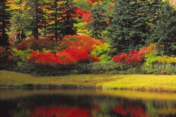 おしらせです。山下茂樹オフィシャルHPにてLANDSCAPE 9を増設しました。_a0158609_16370606.jpg
