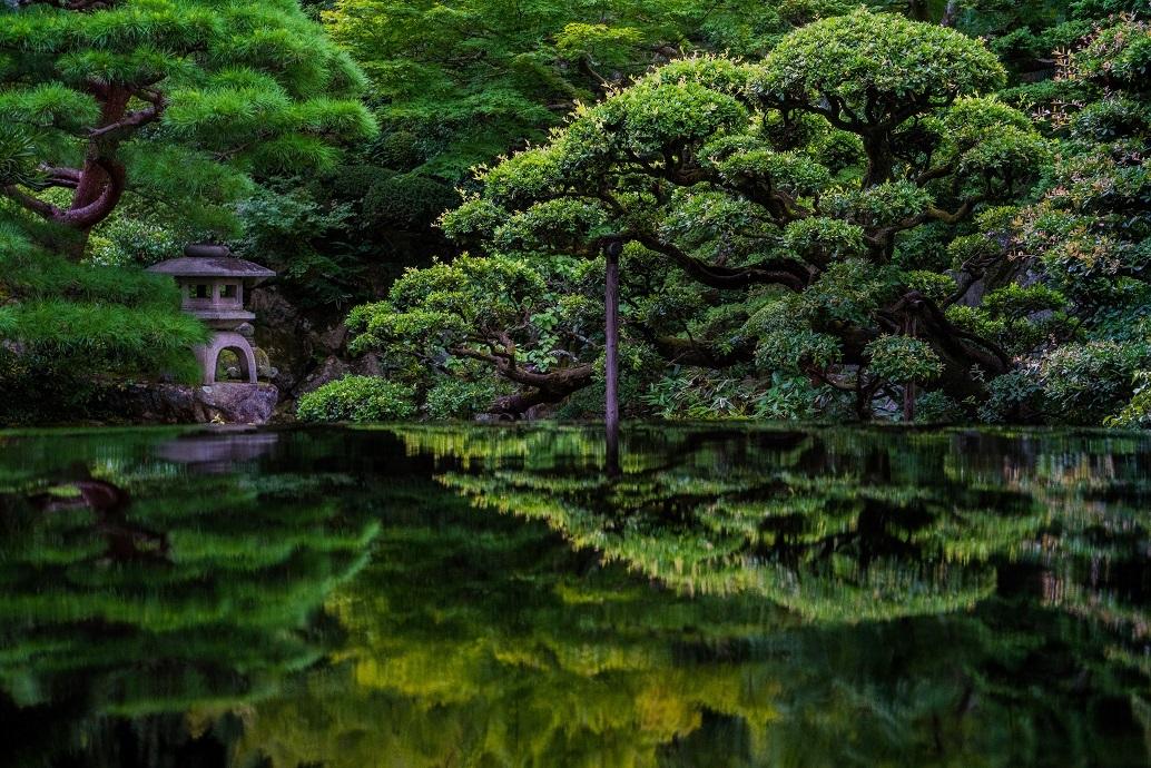 深緑の薫~旧邸御室_e0363038_11033252.jpg
