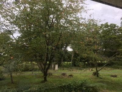 秋の気分って_c0380878_14411197.jpg