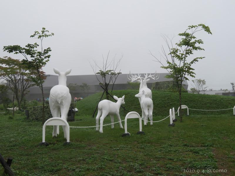 国立アイヌ民族博物館ウポポイへ行ってきた_f0067179_22233747.jpg