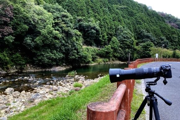 奈良のお山で_c0164881_18355282.jpg