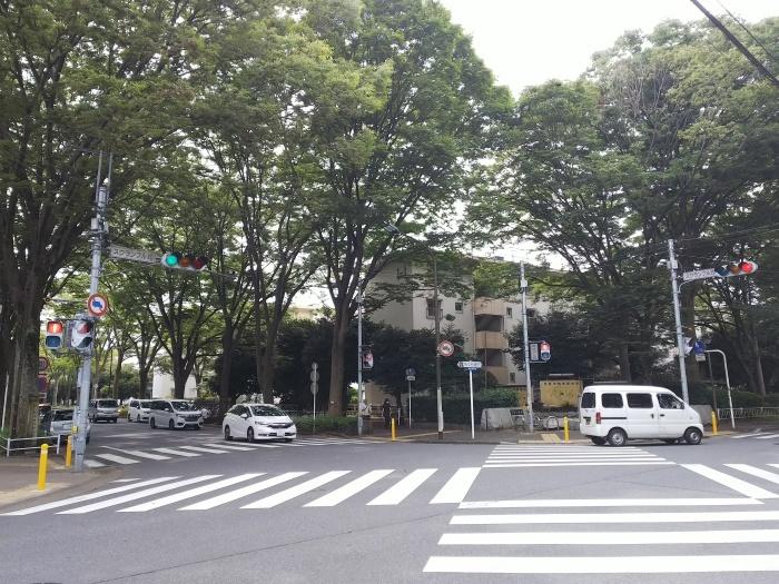 松戸市の隅っこでウロウロする_c0360684_22095741.jpg