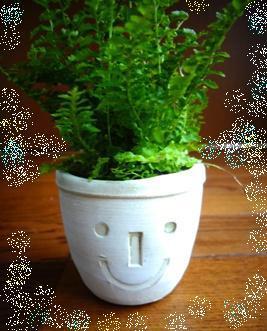 幸せの種を蒔く・・・微笑み習慣のススメ・・・_d0063290_12380804.jpg