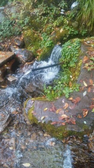 隠れ名水の紹介。_b0219993_08420172.jpg