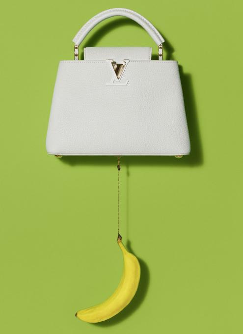 100万円ほどするルイ・ヴィトンの「アーティーカプシーヌ」バッグを引き立てるのは、魚(さんま?)_b0007805_02234712.jpg