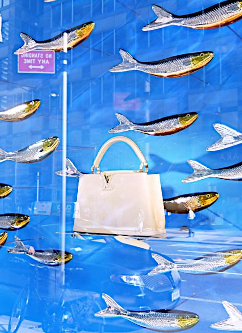 100万円ほどするルイ・ヴィトンの「アーティーカプシーヌ」バッグを引き立てるのは、魚(さんま?)_b0007805_02474830.jpg