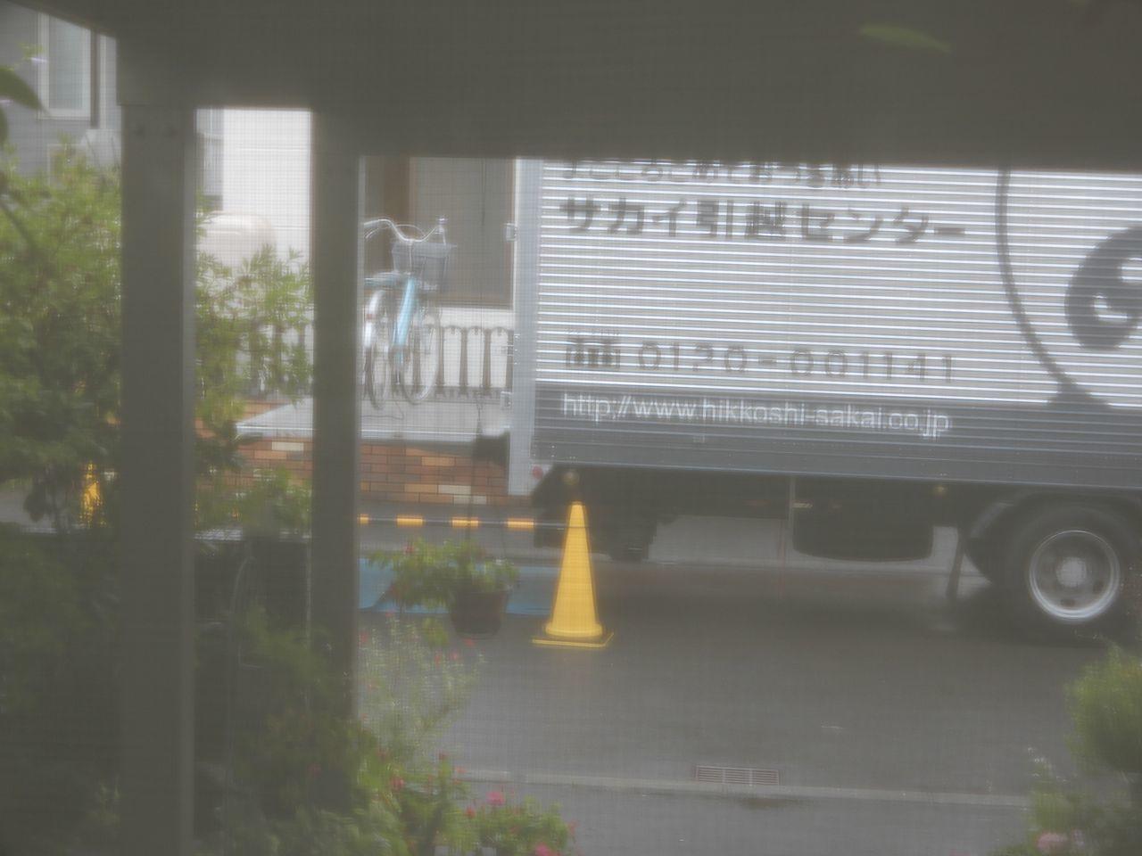 50年ぶりの再会_c0025115_23331959.jpg