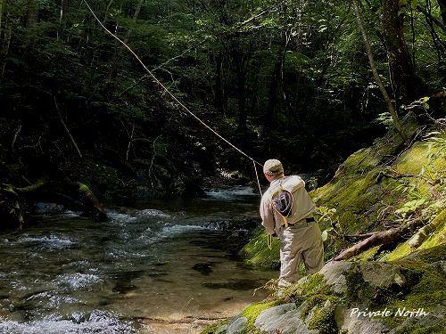 今シーズンラストの渓流釣り_d0261148_18335649.jpg