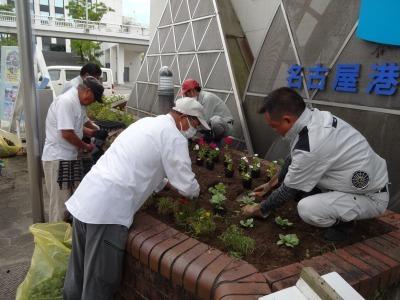ガーデンふ頭総合案内所前花壇の植替えR2.9.14_d0338682_10154542.jpg