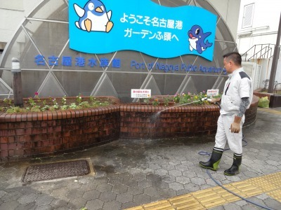 ガーデンふ頭総合案内所前花壇の植替えR2.9.14_d0338682_10160504.jpg