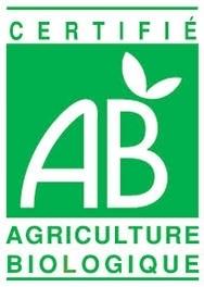 自然栽培と有機栽培_b0408892_10230609.jpg