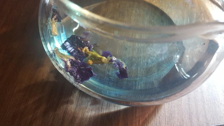 Butterfly..._f0126121_17572648.jpg