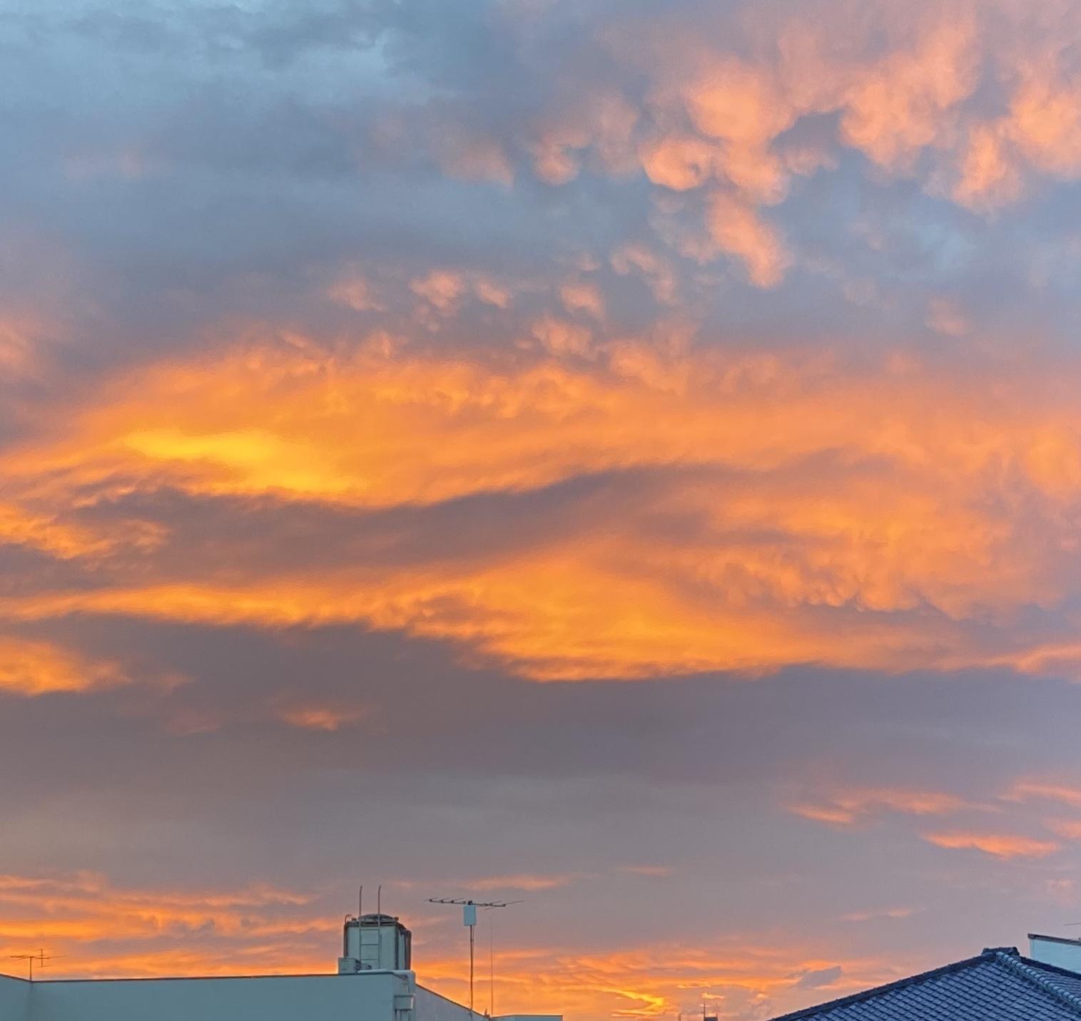 Hakumei  美しすぎる空を見上げて_a0165160_15161887.jpg