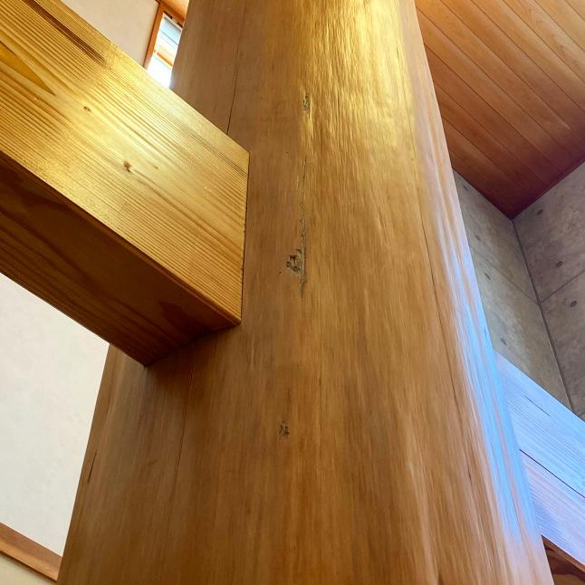 天然木材を扱える技術② (大工)_a0179560_12122795.jpeg