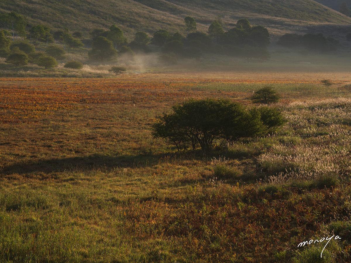 初秋の湿原_c0085877_02234128.jpg