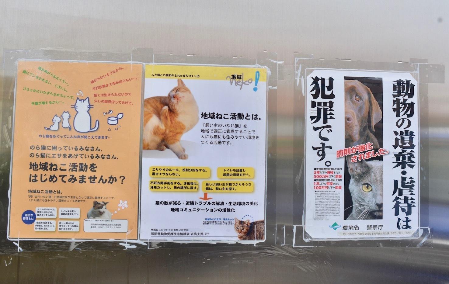 動物愛護週間(9月20日〜26日)_d0073743_15403719.jpeg