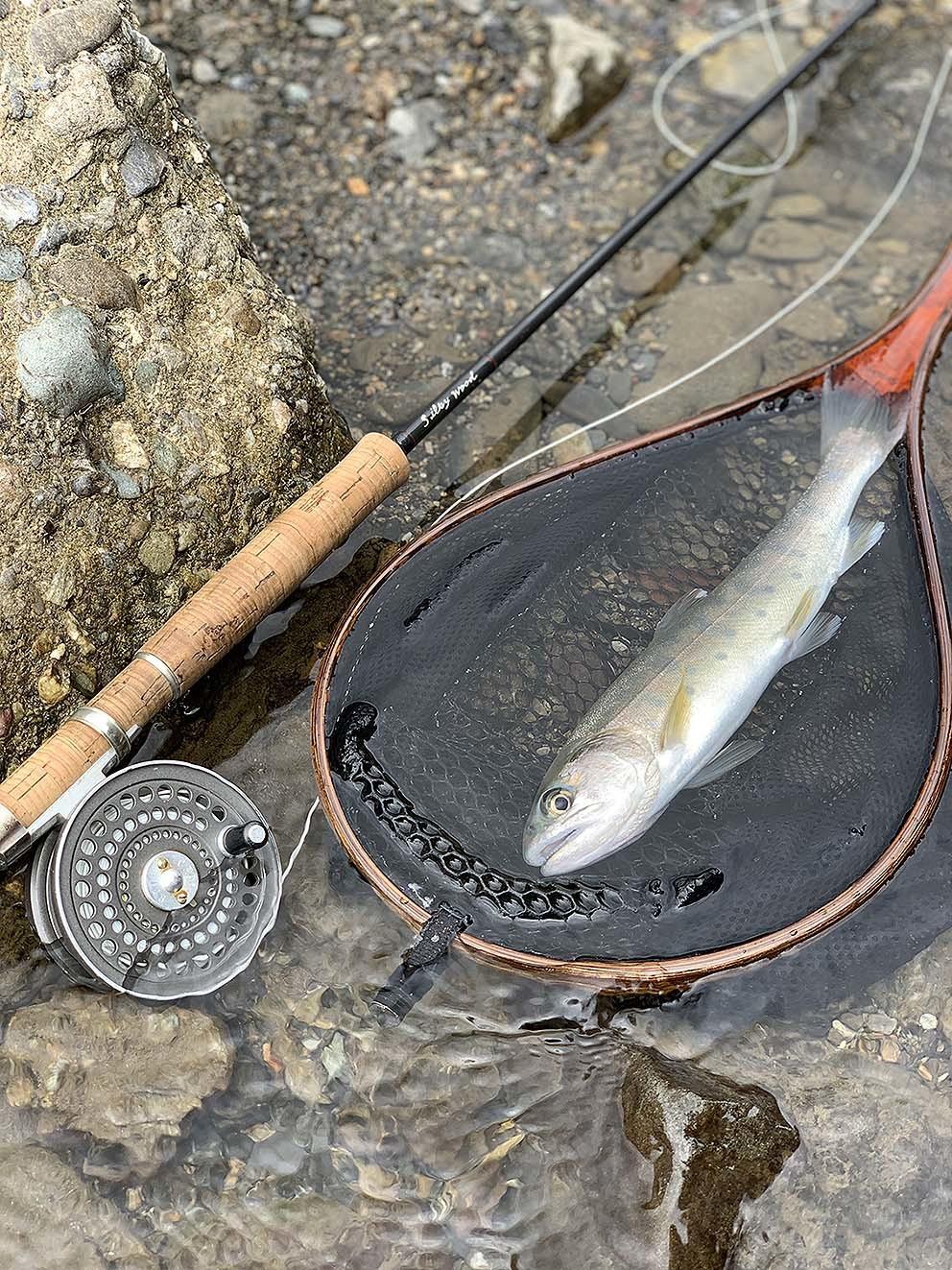 禁漁日釣行_c0095801_01042147.jpg