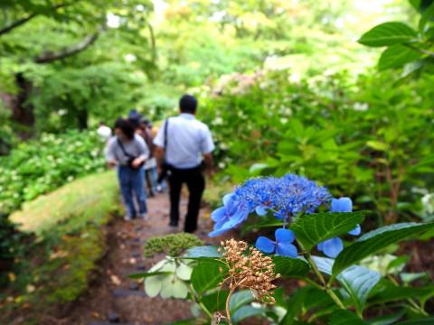 古津軽のスマホ旅*2020.09.05_b0147224_17223926.jpg
