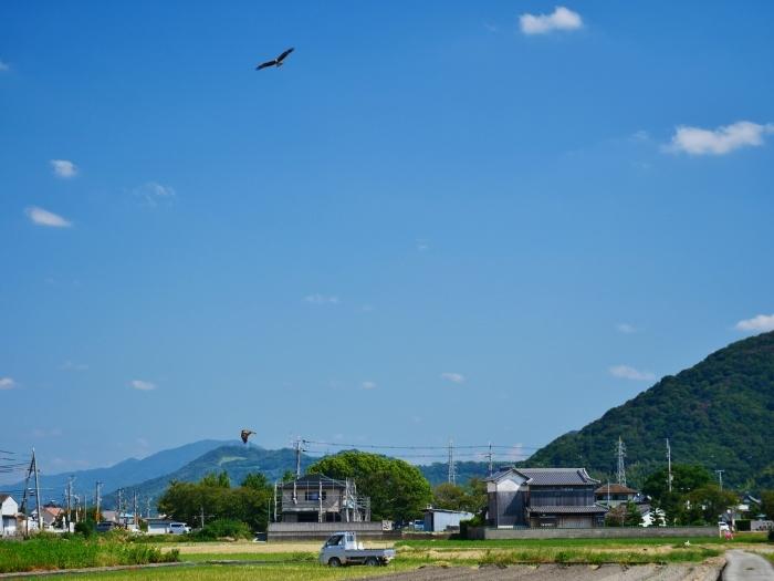 田園風景  2020-09-24 00:00_b0093754_23120488.jpg