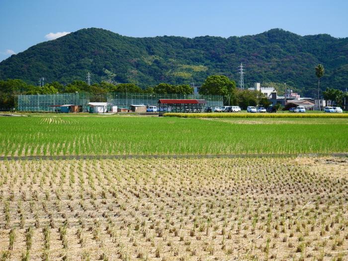 田園風景  2020-09-24 00:00_b0093754_23124199.jpg