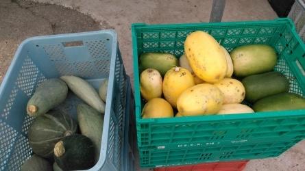色とりどりの野菜が並びました。_c0160368_17084839.jpg
